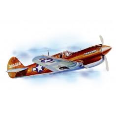 P - 40 Warhawk lazer cut