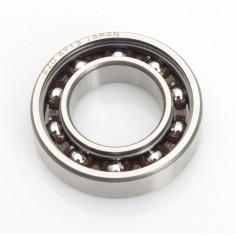 Z.21R Pullstart - Rear Ball Bearing