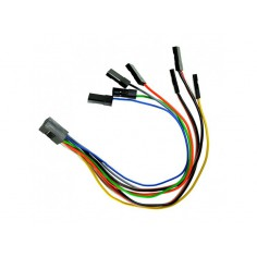 Cableform L250 (AXON, CORTEXpro)