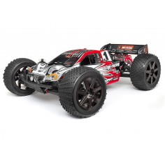 Painted Trophy truggy bodyshell